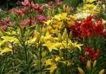 Bristow Garden Shoppe